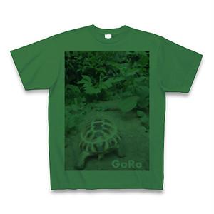 GORO-Tの緑