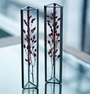 〚ラスト1点〛植物標本 中:ドライフラワー『山野草 ナンテン』