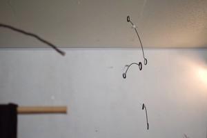 クリプトクリプ / tipura studio