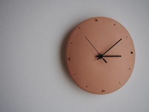 aging clock 411