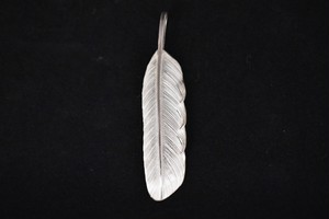 Luck feather