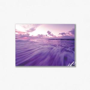 ピザ浜(Purple)