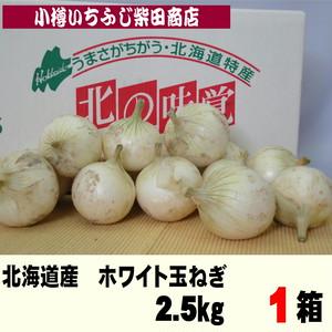 O01 2.5kg ホワイト玉ねぎ 北海道産