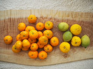冬の柑橘セット【みかん・レモン・柚子】