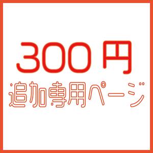 300円追加専用ページ