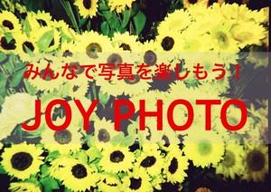 写真クラス JOY PHOTO 8月「夏」参加費用