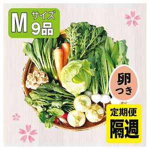 【隔週で届く定期便】「旬の高原野菜セットMサイズ」と「こだわりの平飼い卵」のセット