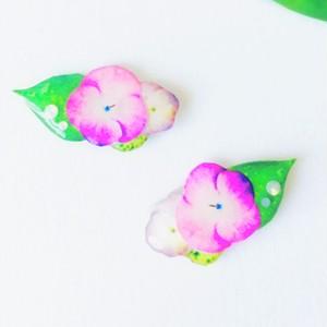 雨上がりの紫陽花(アジサイ)
