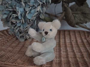 Vintage Mohair twin teddy bears (Boy)