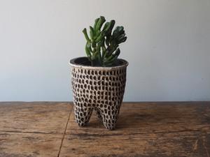 植木鉢 u53 ダンプティ(フチ付)