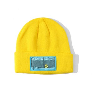 IGGY ESCAPE PATCH BEANIE
