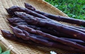 紫アスパラガス 1kg もうすぐ発売終了です。
