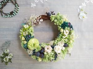 Jolie botanique<Vert pomme>*ハーフムーンリース*プリザーブドフラワー*お花*ギフト*結婚祝い*新築祝い*お誕生日祝い*母の日*春の新作
