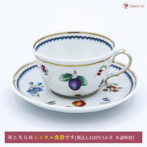 リチャードジノリ(GINORI 1735/Richard Ginori)イタリアンフルーツ ティーカップ&ソーサー(200004)
