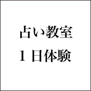 お稽古占いor1日レッスン 40分