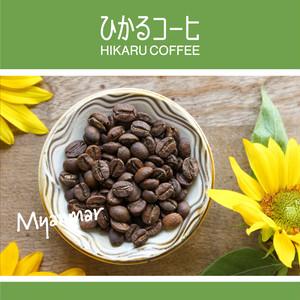 ミャンマー(浅煎り コーヒー豆) / 100g