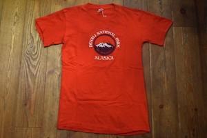 USED USA製 デナリナショナルパークTシャツ 70s 80s 赤 S~M