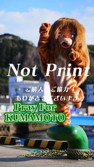 ライオンデビル 01 【長崎】
