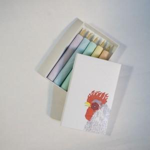カラフルミニー|5本紙箱