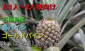 【送料無料】石垣島のパイナップル2種食べ比べ(島パイン&ゴールドパイン)2kg