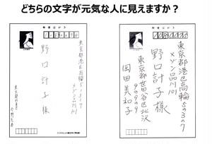 筆跡診断書作成+エルソルナ鑑定付き