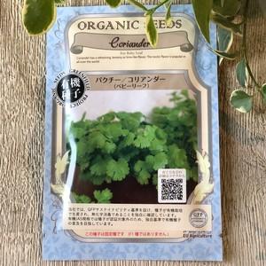 パクチー/コリアンダー (ベビーリーフ)  有機種子*固定種