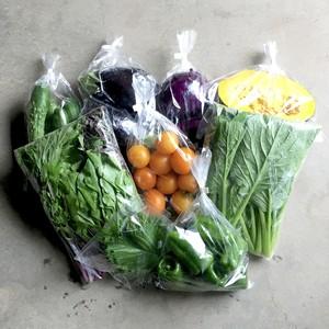小鮒農園の野菜セット-Sサイズ-