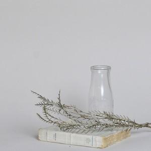 Bottle / ボトル【B】〈花瓶 / フラワーベース / 一輪挿し〉