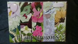 manyon24 Planet dragons