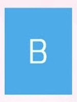 New 生フォトカード(4枚入り) B