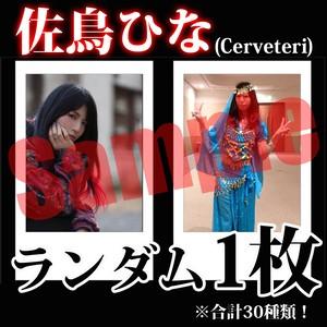 【チェキ・ランダム1枚】佐鳥ひな (Cerveteri)