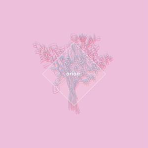 【新品】orion(初回生産限定オリオン盤)
