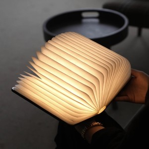book light LED rechargeable night light 2size / ブックライト ルームライト 照明 本 韓国 北欧