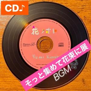 YumiKIMURA【花ノオト】13th CD