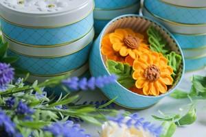 【送料無料✿ヒマワリ】お花のぼうろ<20缶セット>