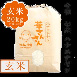 【新米】令和2年産 ハナエチゼン 玄米20kg