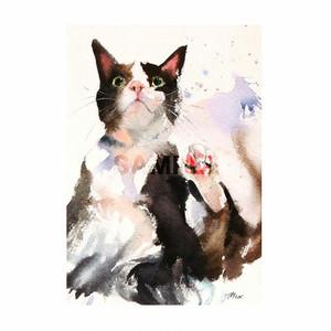 台湾ポストカード 水彩猫「賓士也粉嫩」