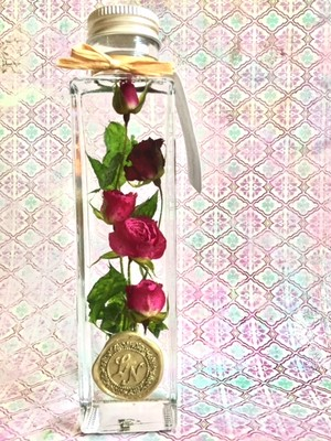 【in the bottle】rose / magenta