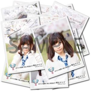 琴石マリア ブロマイド3枚セット 【桜/全12種】 2015年4月 #BR02701