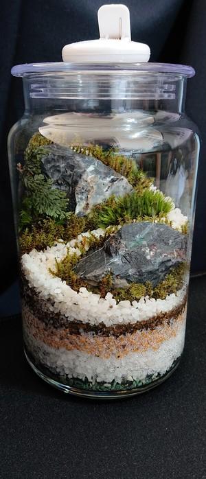 苔ボトル Kokebottle Moss bottle ライト付きセット 010