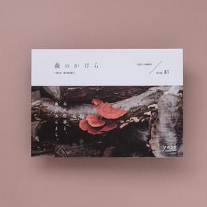 yasoの本 森のかけら 2020 summer. issue_01