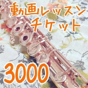 動画レッスンチケット3000