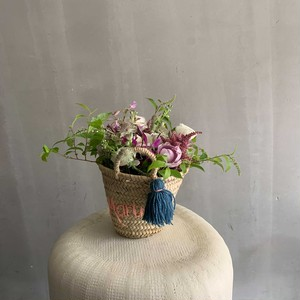 flower basket / coral