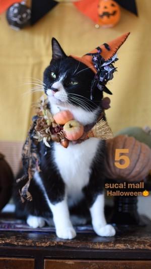 5*Halloween!! スカとおそろいリース☆