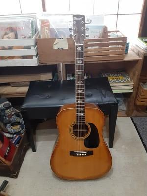 Kansas W-300ジャパンヴィンテージアコースティックギター