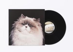 LP盤『燦々』(初回限定生産アナログレコード)