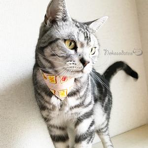 【トースト柄】猫用バンダナ風首輪/選べるセーフティバックル 猫首輪