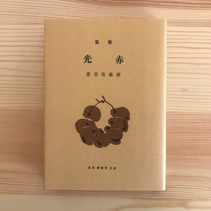 赤光(名著復刻詩歌文学館 山茶花セット) / 斎藤茂吉(著)