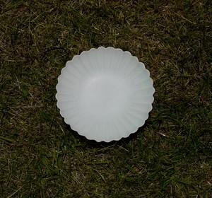 白磁輪花菊花皿