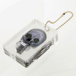 3D透明標本 スカル キーホルダー L ブラック